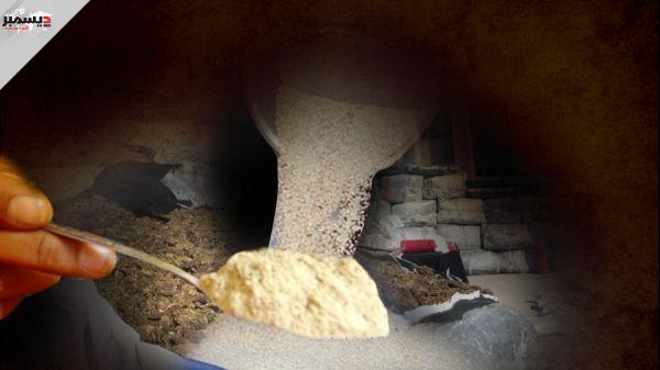معقل ميليشيا الحوثي مركزاً لتجارة المخدرات وزراعة الحشيش وترانزيت تهريب