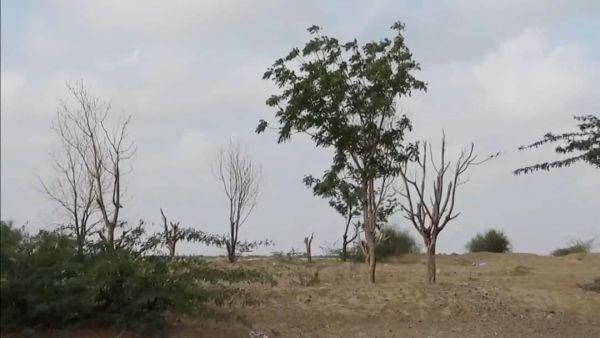 ألغام الحوثيين ونيرانهم تعطل الزراعة في محيط حيس وتكبد المزارعين خسائر كبيرة